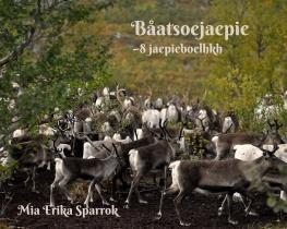Båatsoejaepie -8 jaepieboelhkh