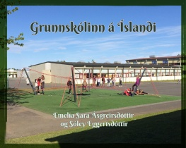 Grunnskólinn á Íslandi