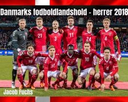 Danmarks fodboldlandshold - herrer 2018