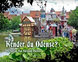 Kender du Odense?