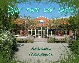 Djur runt vår skola