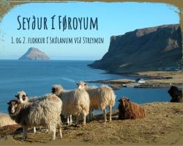 Seyður í Føroyum