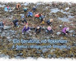 Ein fjørutúrur við flokkinum