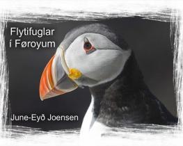 Flytifuglar í Føroyum